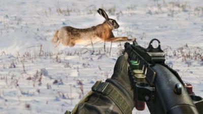 Заяц в прицеле ружья