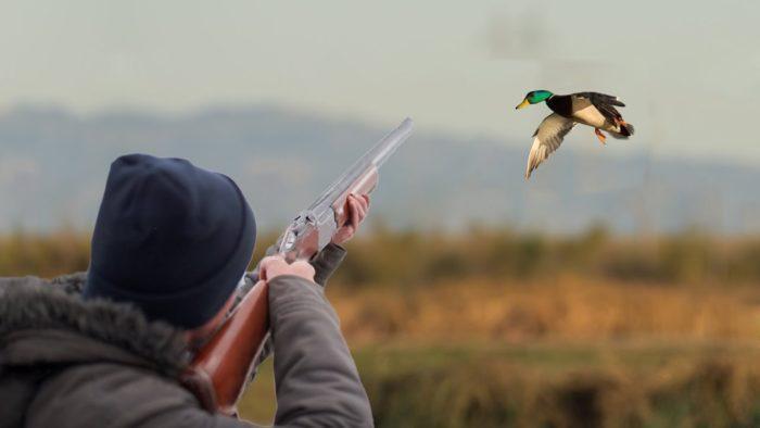 Охота