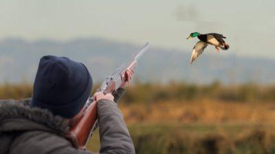 Утиная охота
